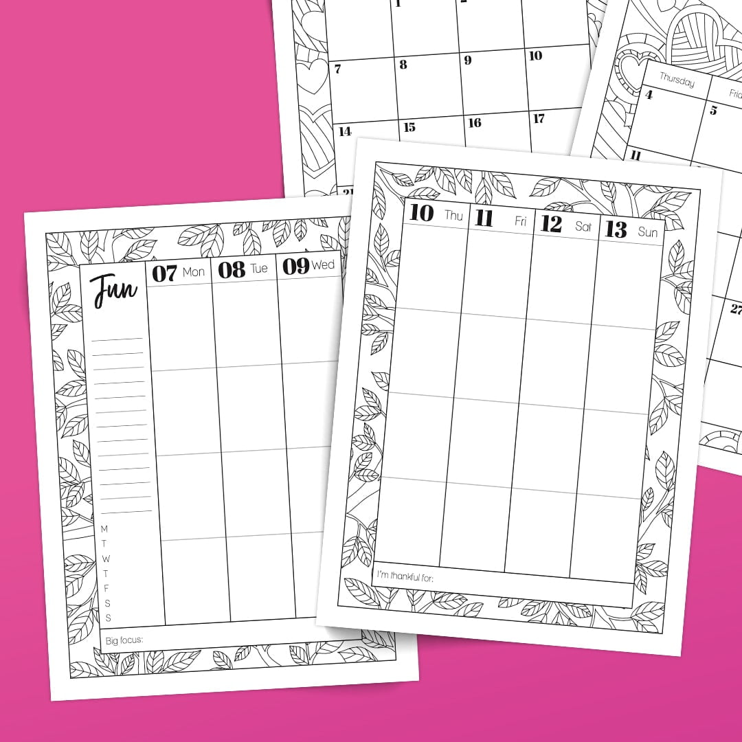 (PRE-ORDER SPECIAL) 2021 Coloring Planner: Digital ...
